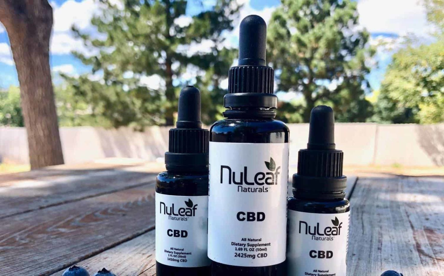 Top 40 Best CBD Oils Reviewed for 2019 - Guide to CBD